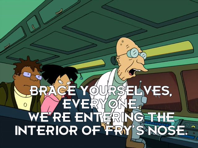 Prof Hubert J Farnsworth: Brace yourselves, everyone. We're entering the interior of Fry's nose.
