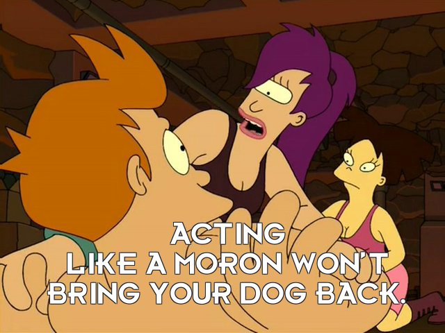 Turanga Leela: Acting like a moron won't bring your dog back.