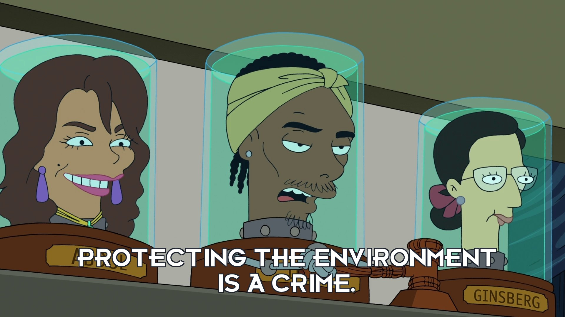 Snoop Dogg's head: Protecting the environment is a crime.