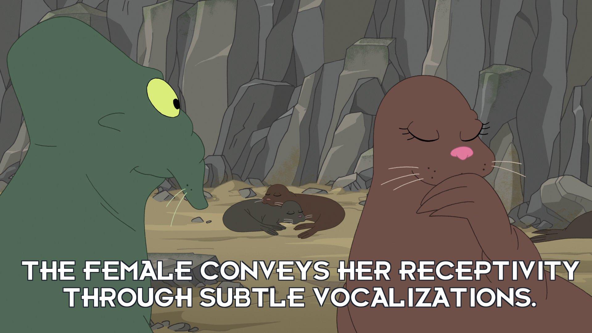 Narrator: The female conveys her receptivity through subtle vocalizations.