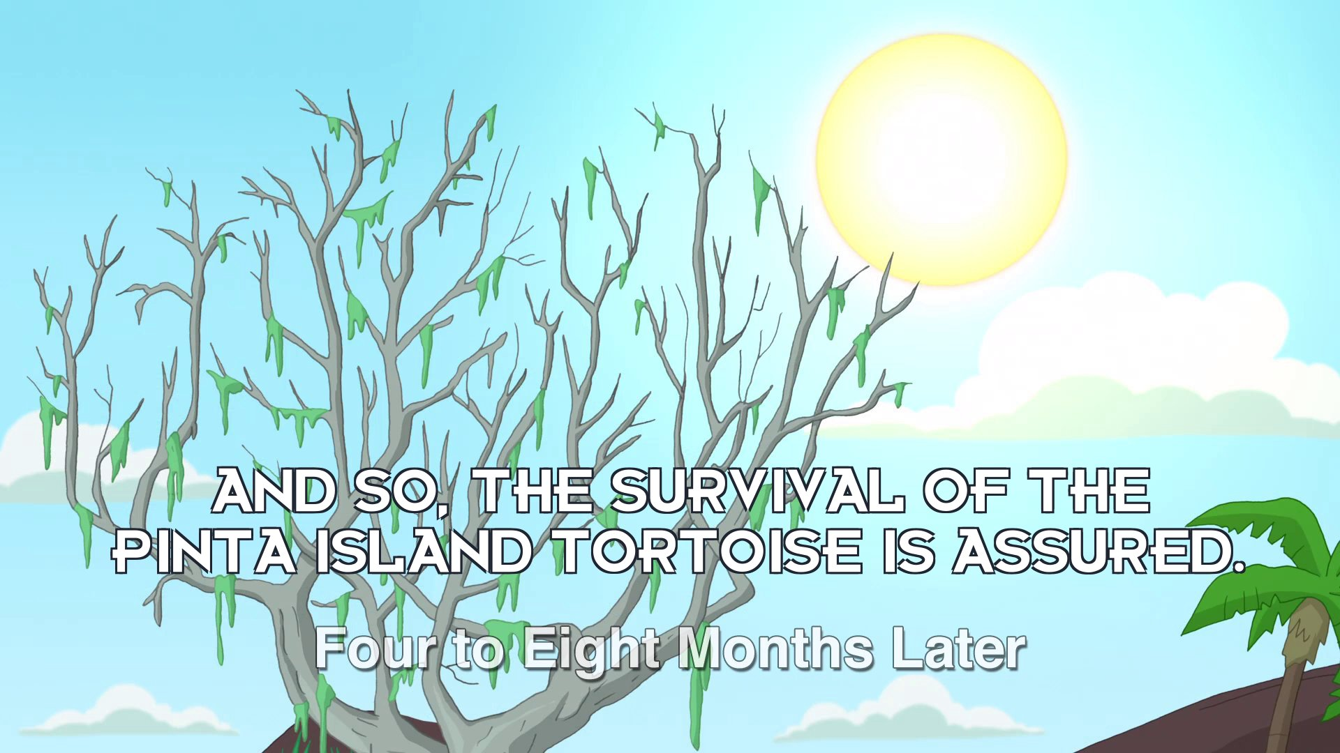 Narrator: And so, the survival of the Pinta Island tortoise is assured.