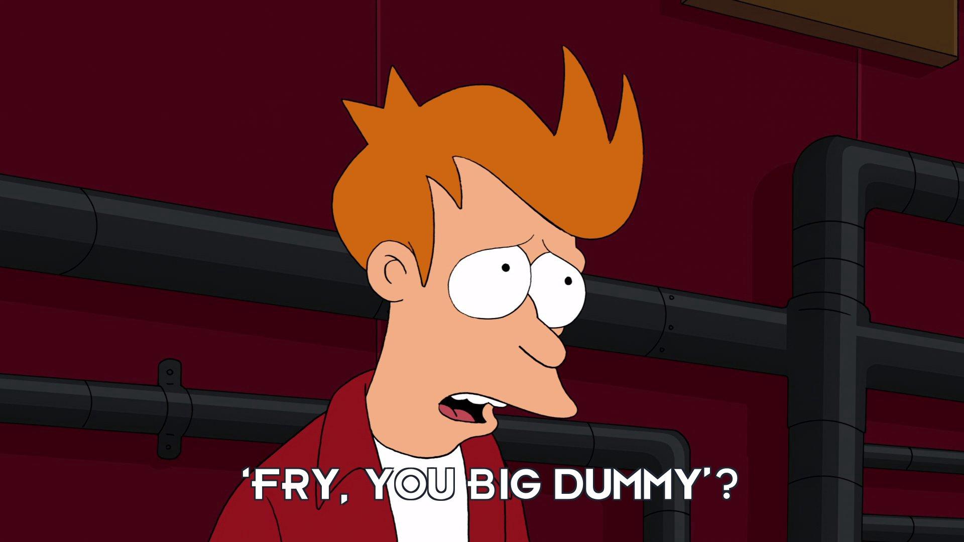Philip J Fry: 'Fry, you big dummy'?