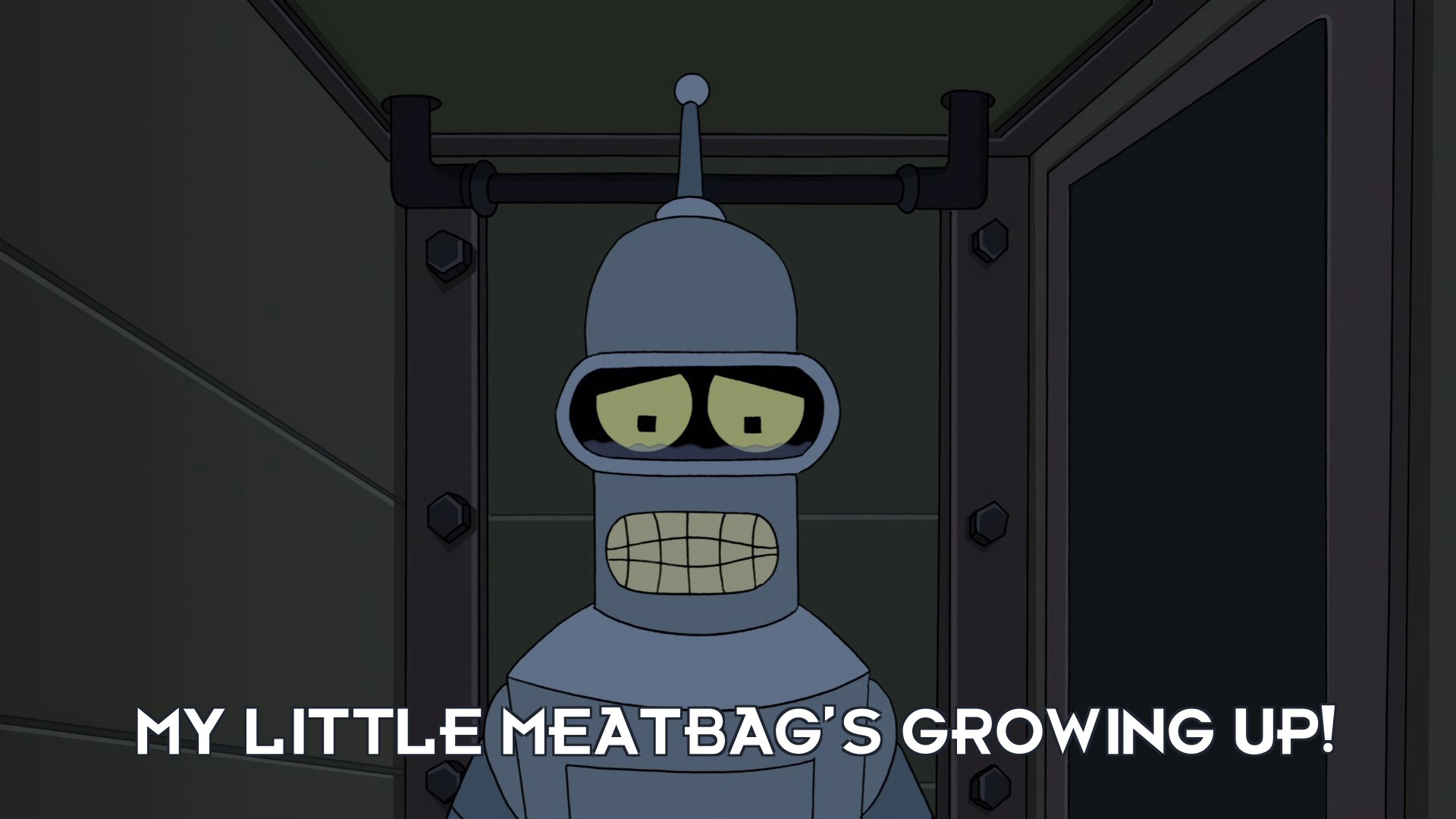 Bender Bending Rodriguez: My little meatbag's growing up!